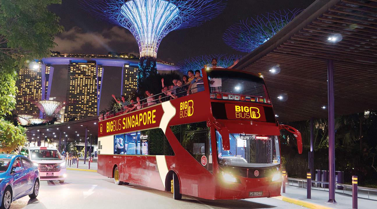 sightseeing bus tour at night