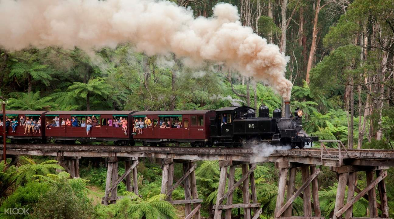 Healesville Sanctuary and Puffing Billy Tour
