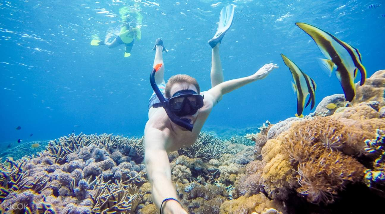a man snorkeling near two fishes somewhere in Bali