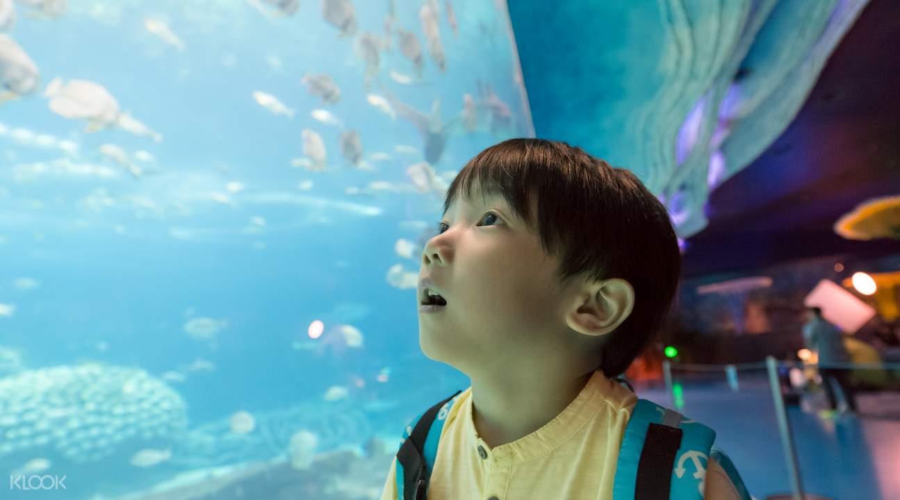 珠海海洋公园