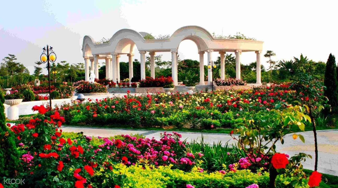 guangzhou rose garden