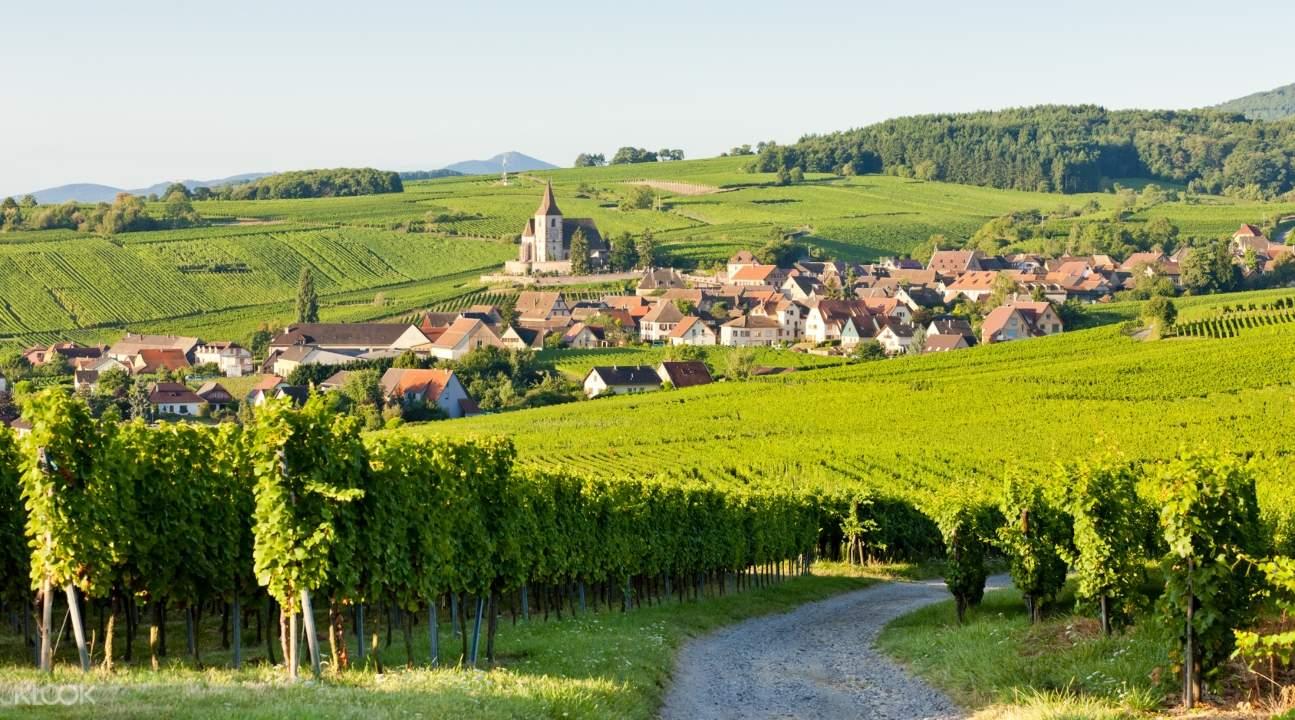 阿爾薩斯一日葡萄酒之旅,史特拉斯堡阿爾薩斯葡萄酒之旅,阿爾薩斯一日遊,葡萄酒品嚐,阿爾薩斯葡萄酒之旅,法國葡萄酒之旅