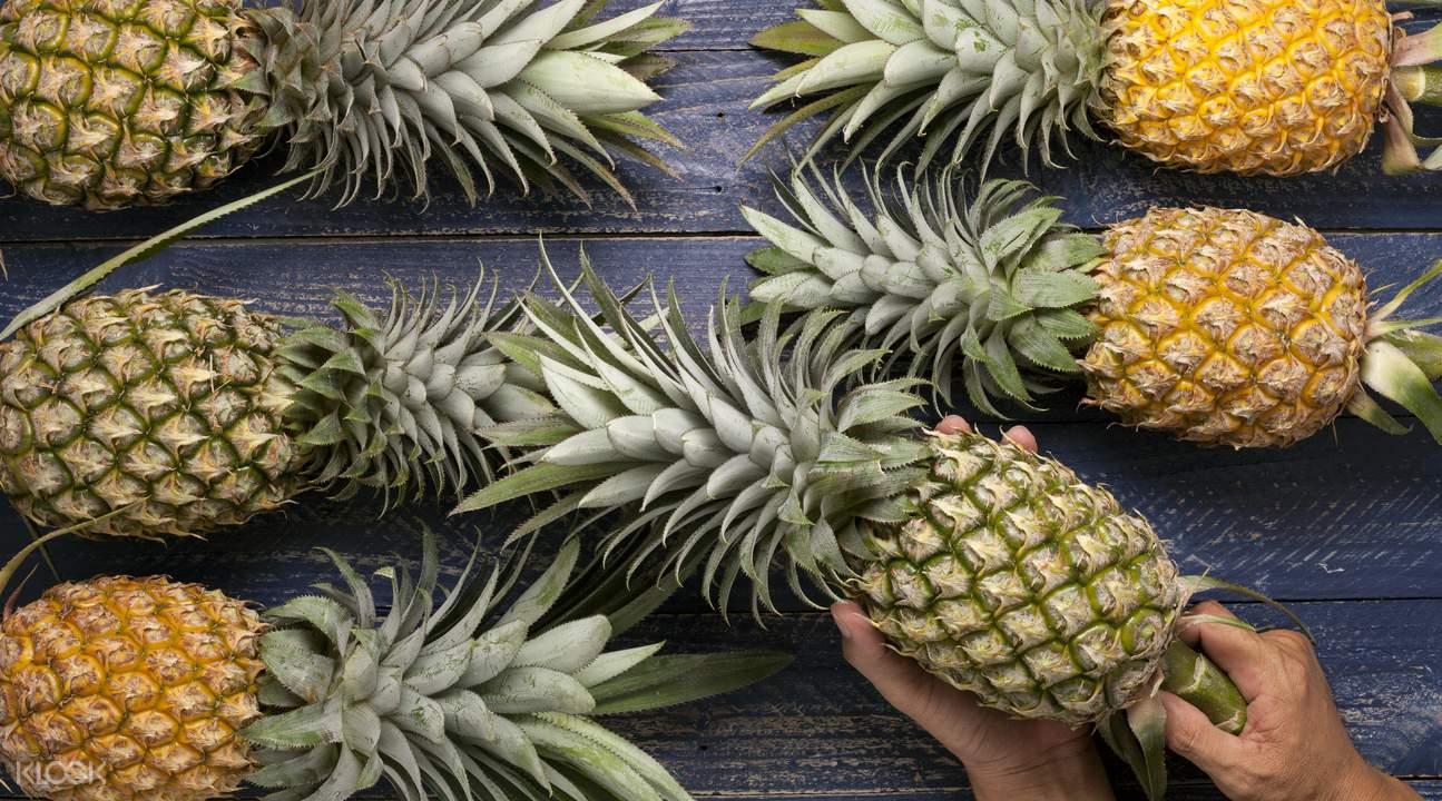 Pineapple Culture Park