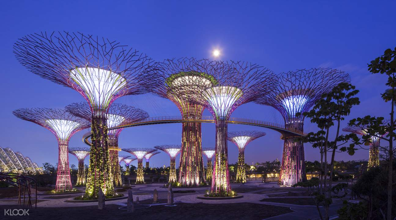 Gardens by the Bay: OCBC Skyway