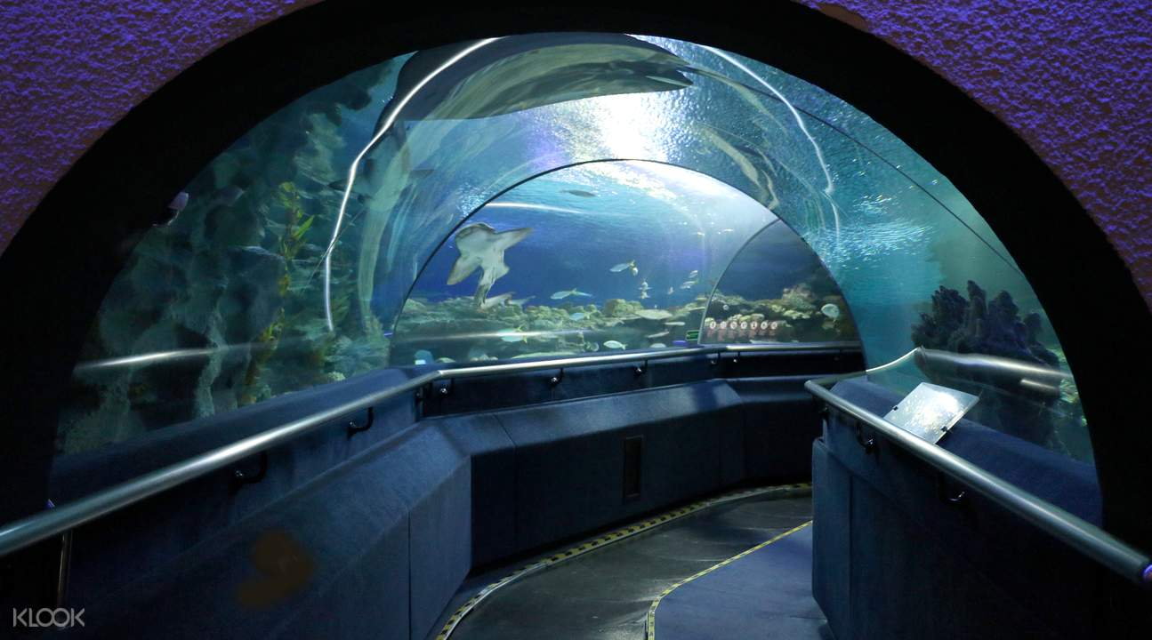aquaria klcc tunnel