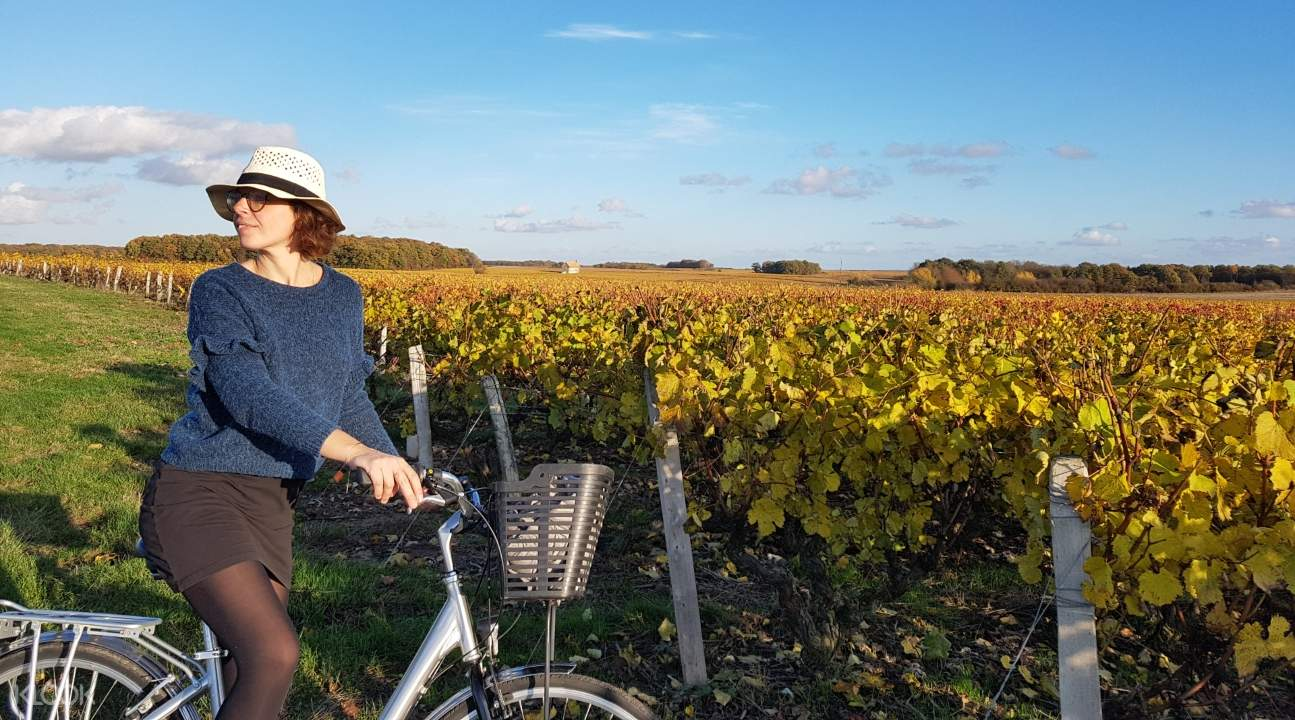 a girl on a bike cycling around the Loire Valley; she's looking to her right
