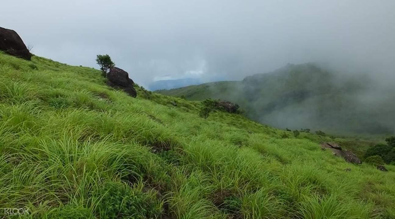 Tadiyandamol山脈