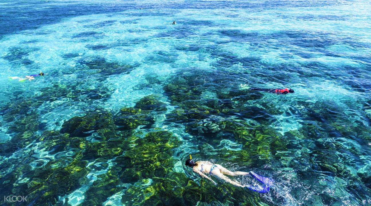 「綠島」的圖片搜尋結果