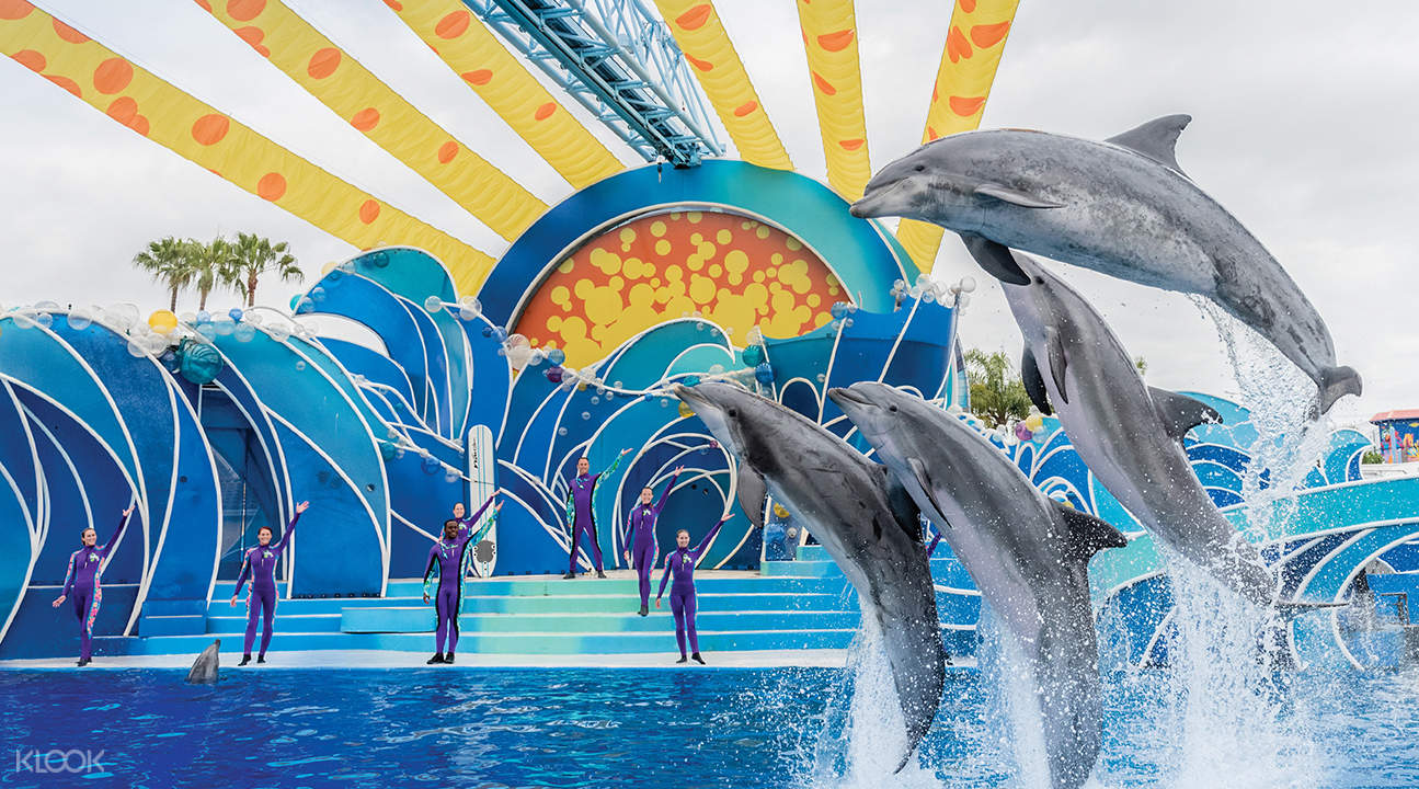 how to get cheap seaworld tickets san diego