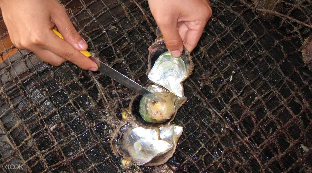 Phu Quoc Island pearl farm