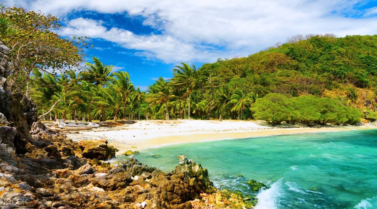 sand, water, trees, rocks, and waves crashing on Malcapuya Island