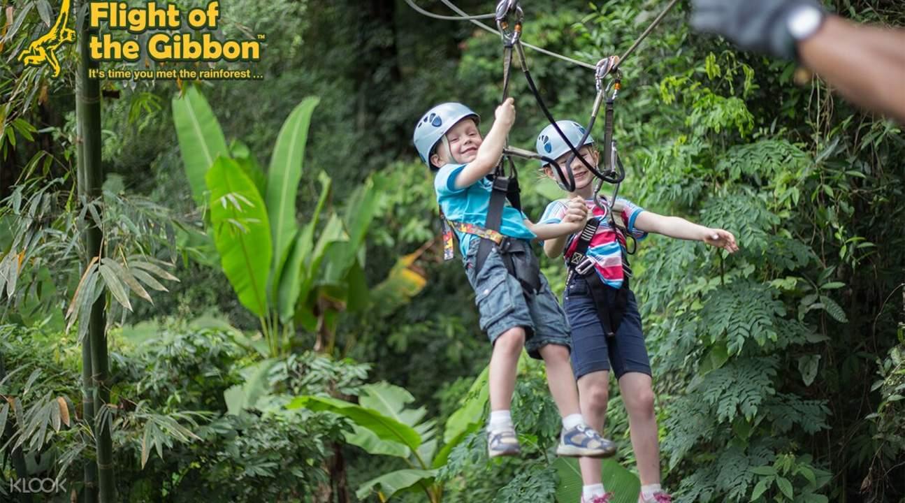 Flight of the Gibbon - Klook