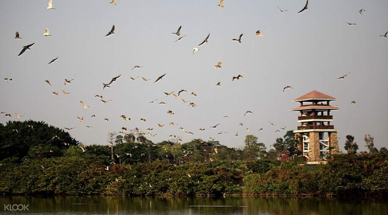 nansha wetland park china