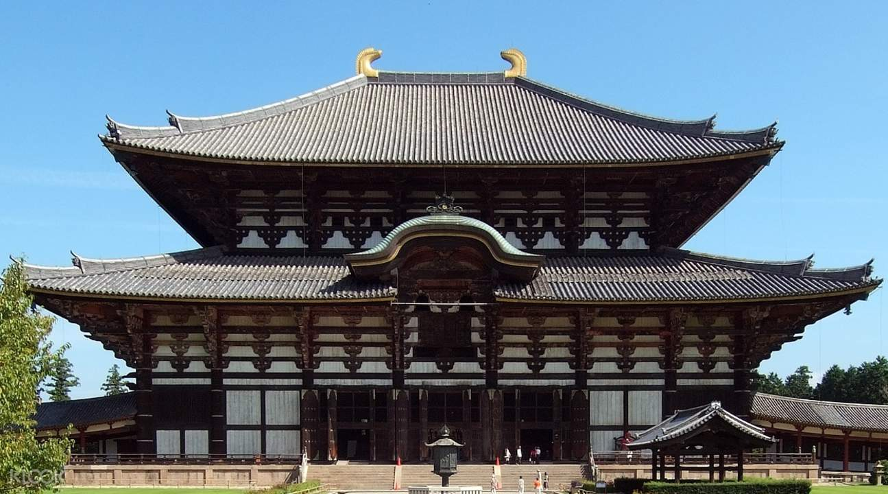 nara day tours todaiji temple