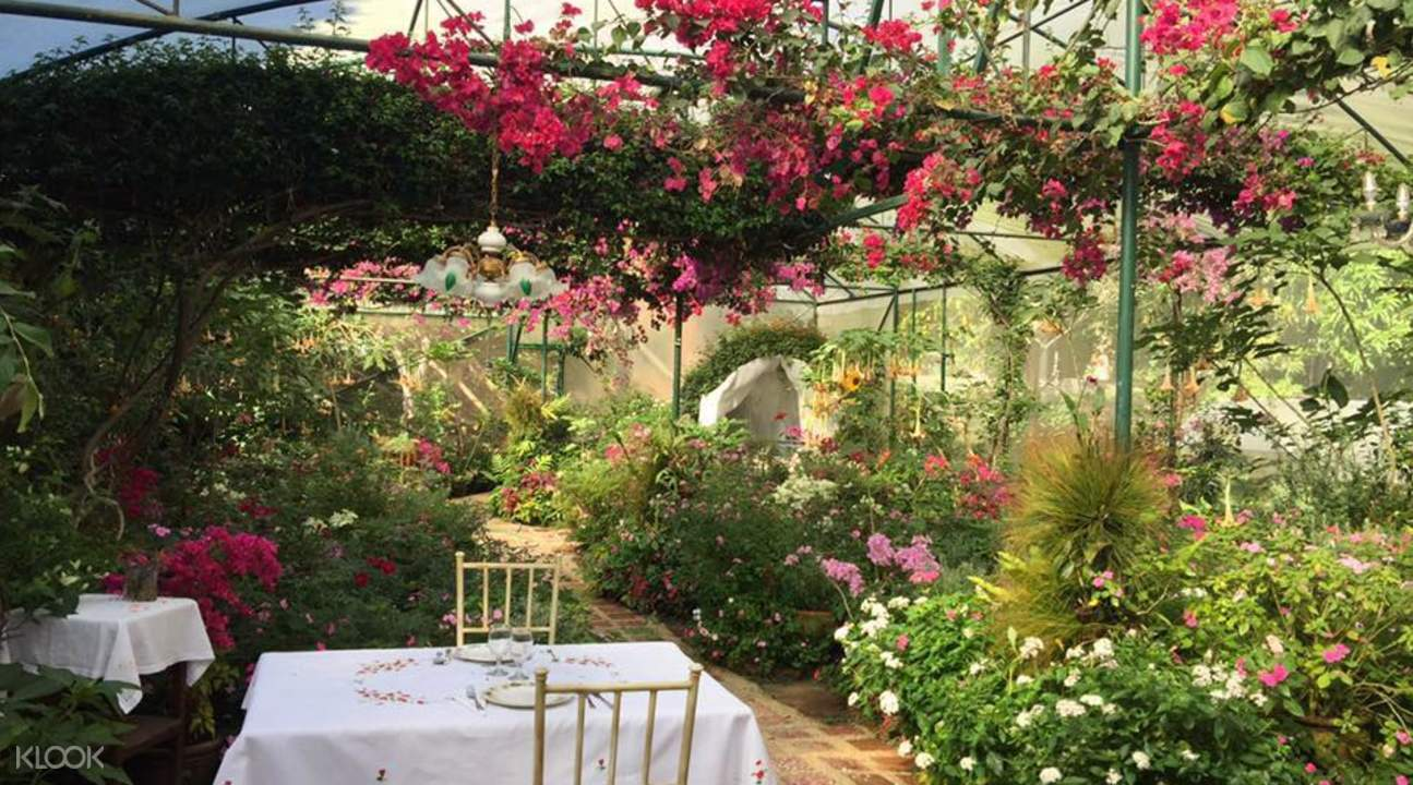 Sonya's Garden