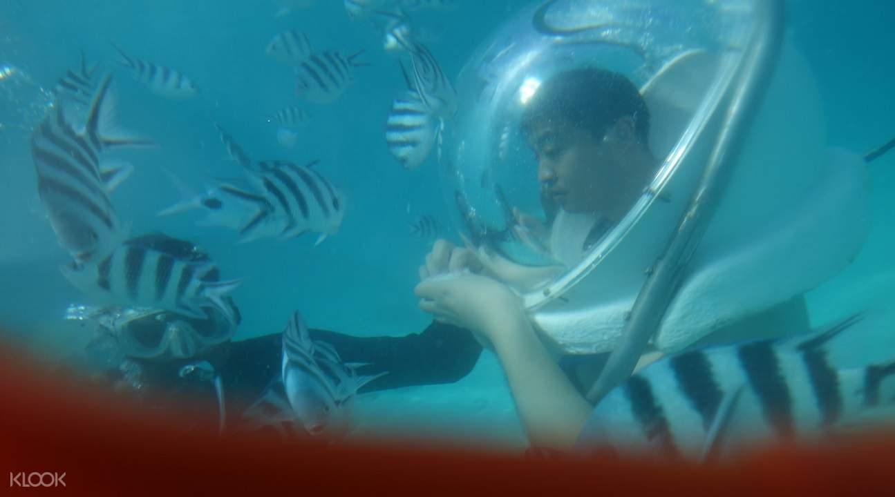 格兰岛玻璃底船,快艇,浮潜趣游海岛一日游