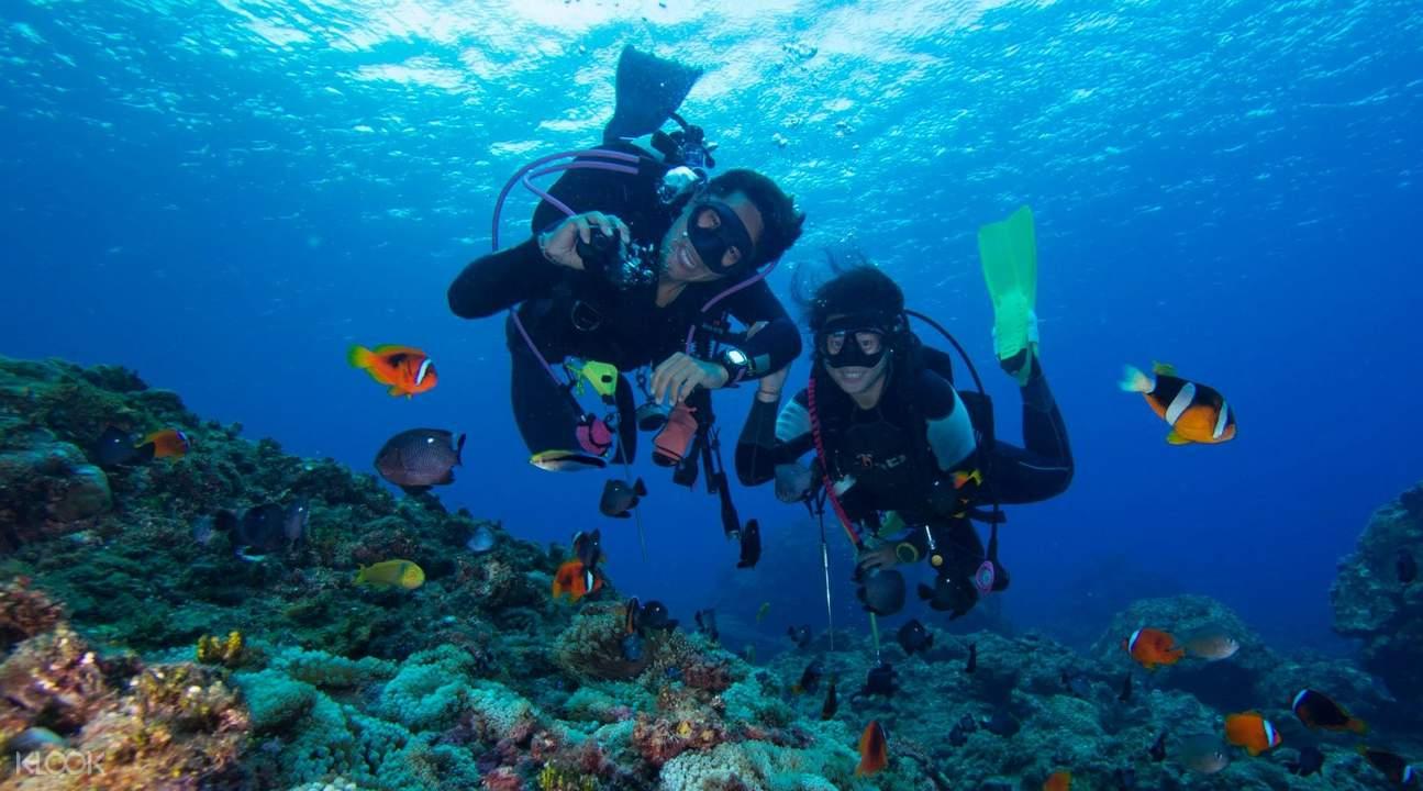 兰屿潜水体验