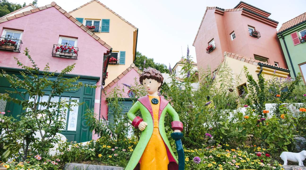 Ticket KD Tailored Bus to Nami Island, Petite France & Garden of Morning  Calm Day Trip from Seoul