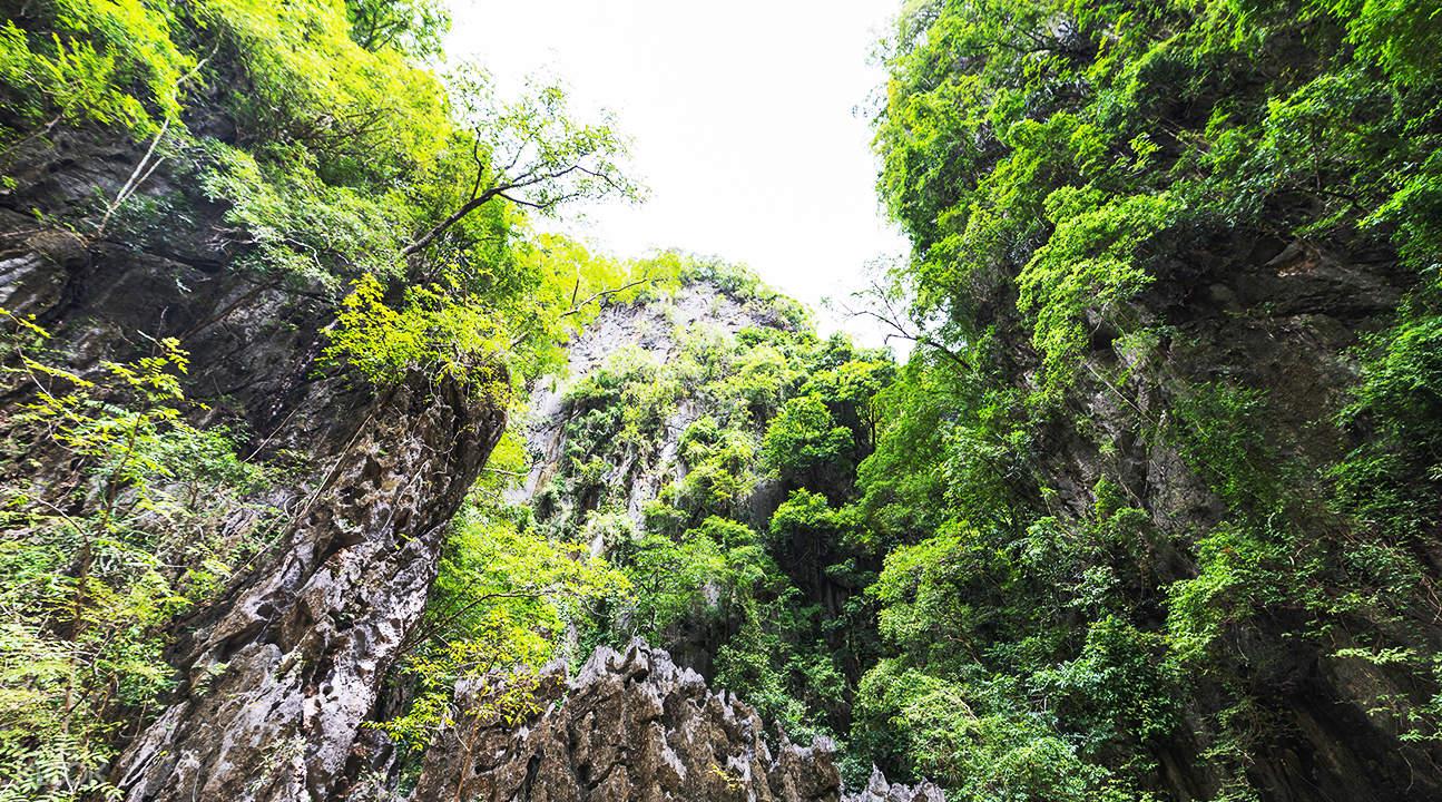 natural scenery of panak island