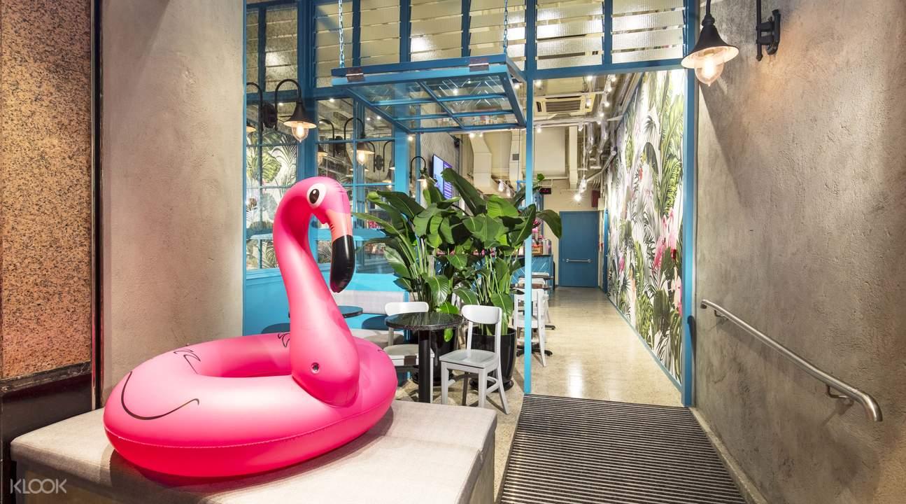 flamingo bloom central