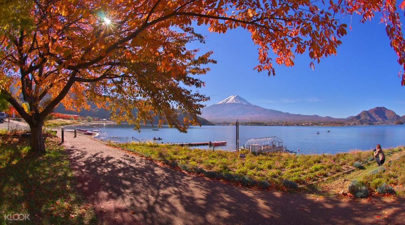 河口湖紅葉祭