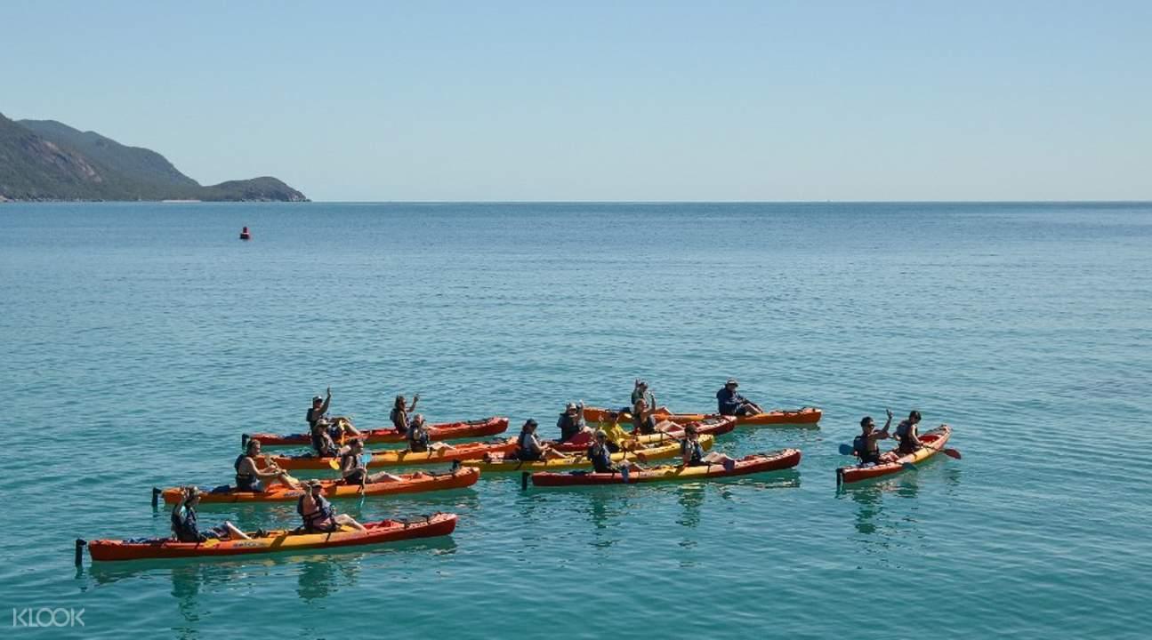 Fitzroy Island tour