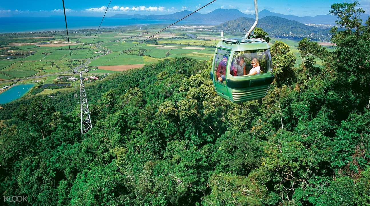Green Island and Skyrail Rainforest Cableway Adventure