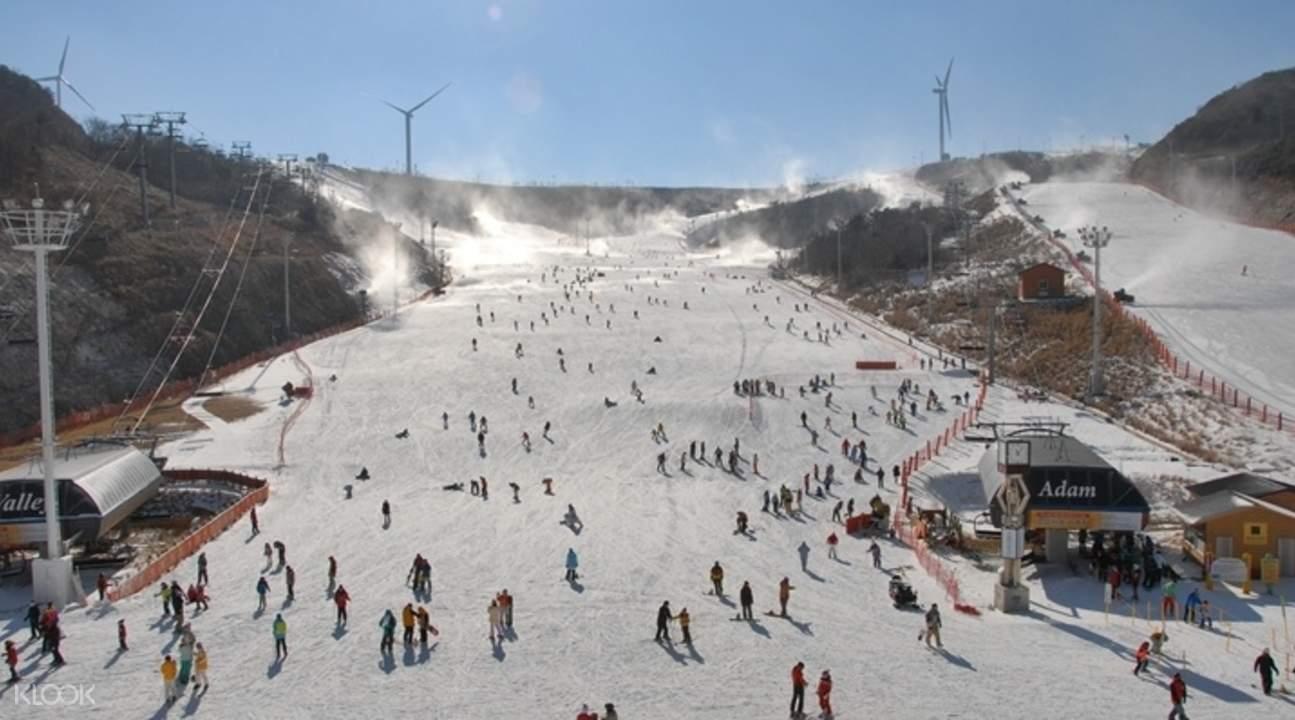 eden valley ski resort private transfer busan south korea