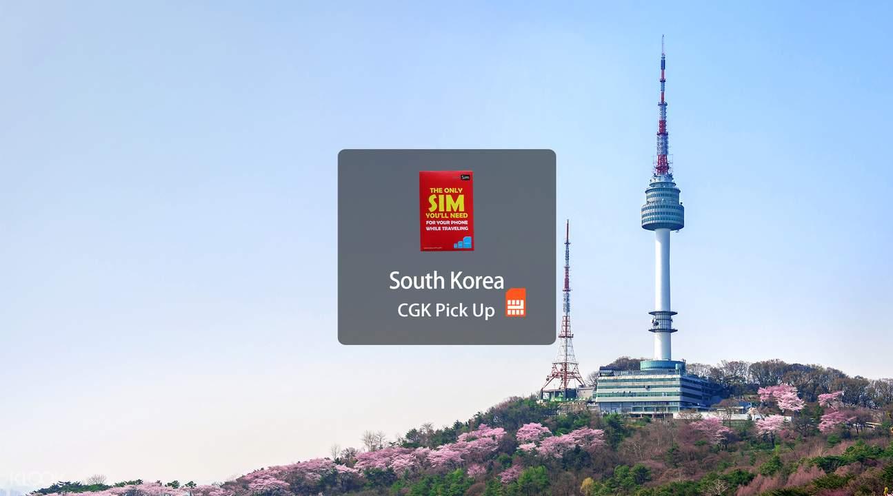 south korea sim card data