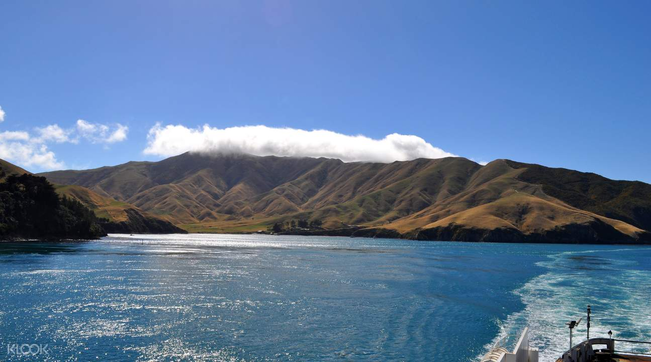 view of Marlborough Sounds