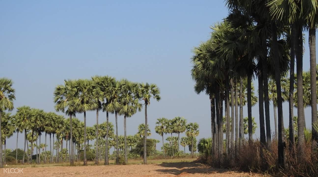Shwe Hlaing Village bagan myanmar