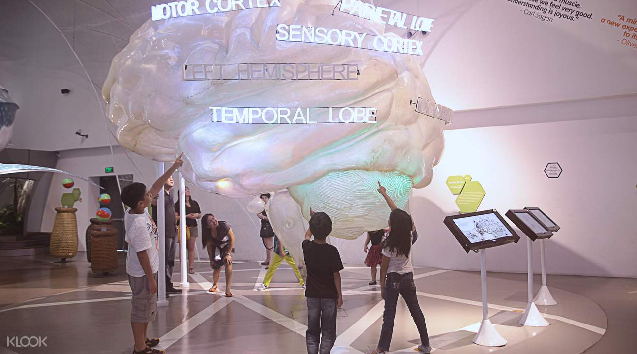 tourists in the mind museum gallery