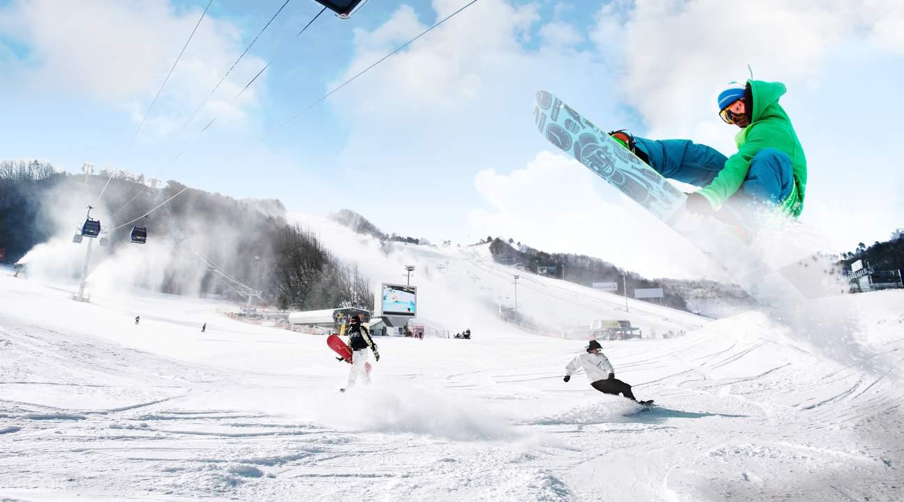 Nami Island and Daemyung Resort Vivaldi Park Ski World Day
