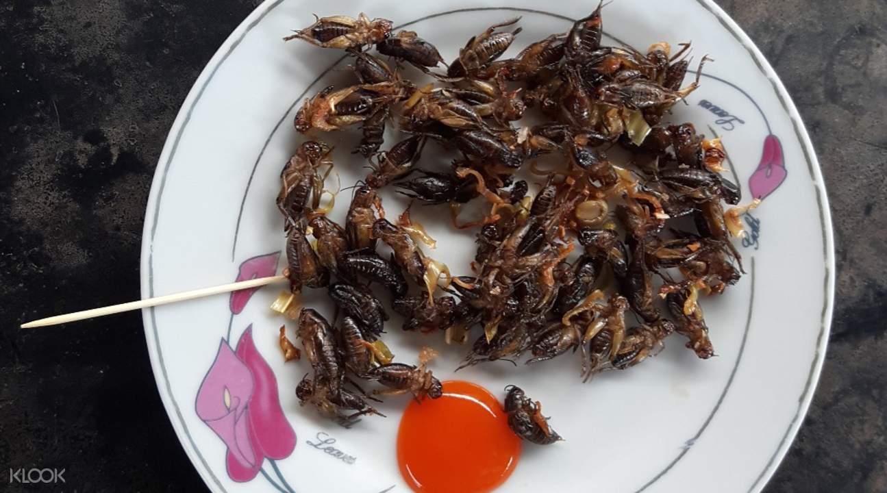 大叻蟋蟀农场