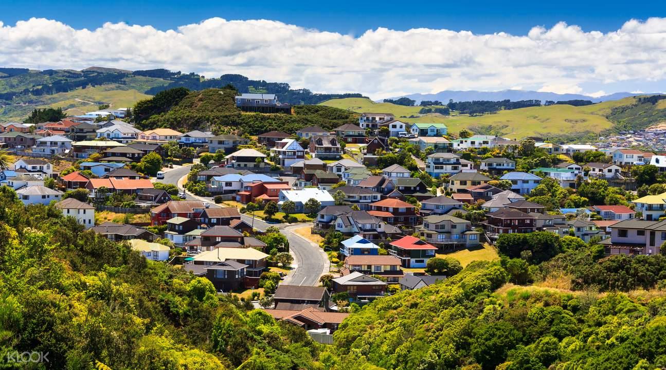 wairarapa valley rolling hills