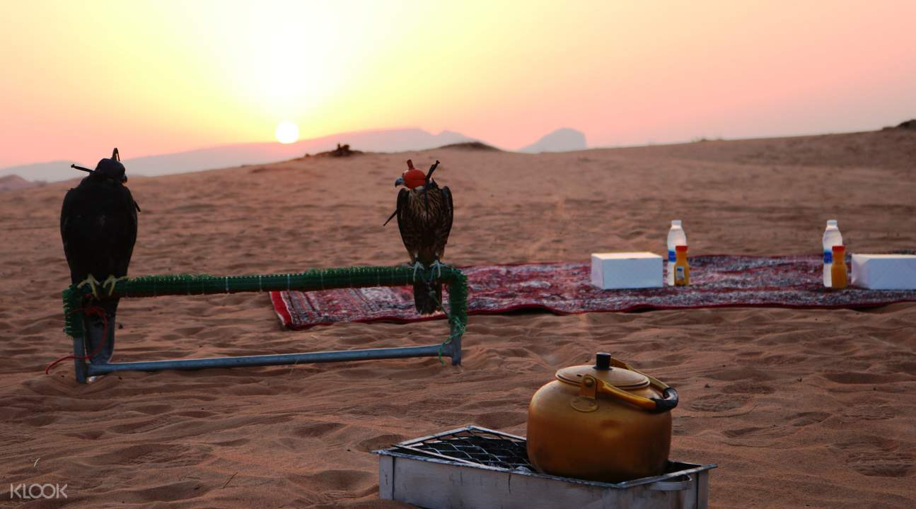 迪拜沙漠保护区