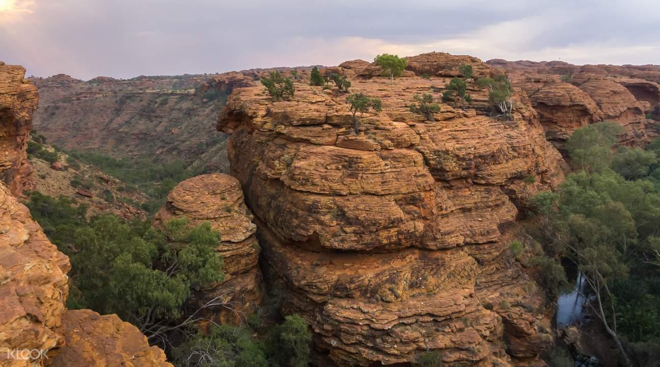 国王峡谷一日游