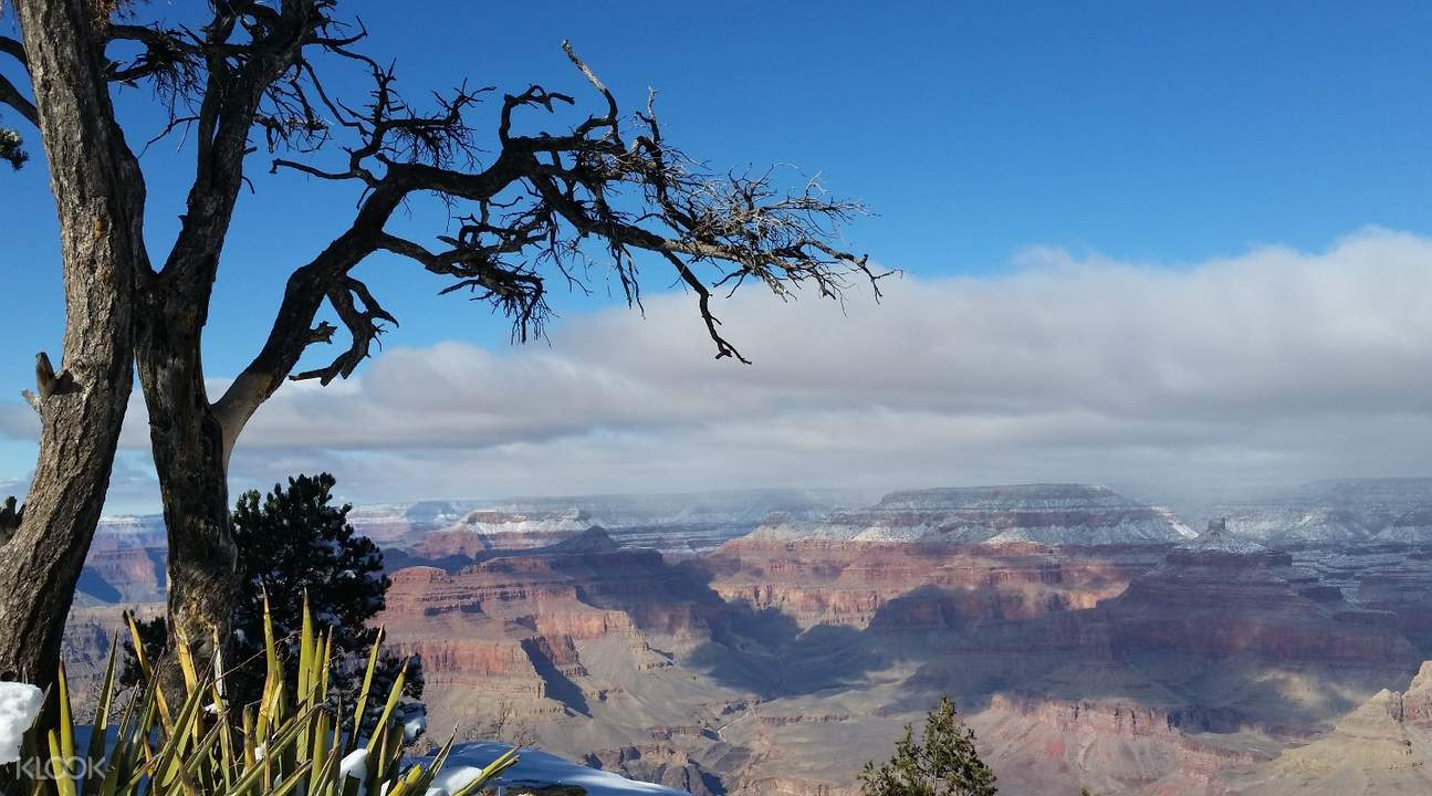 tandem skydive grand canyon