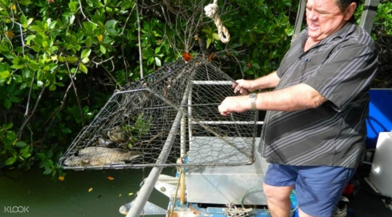 how to catch mud crabs