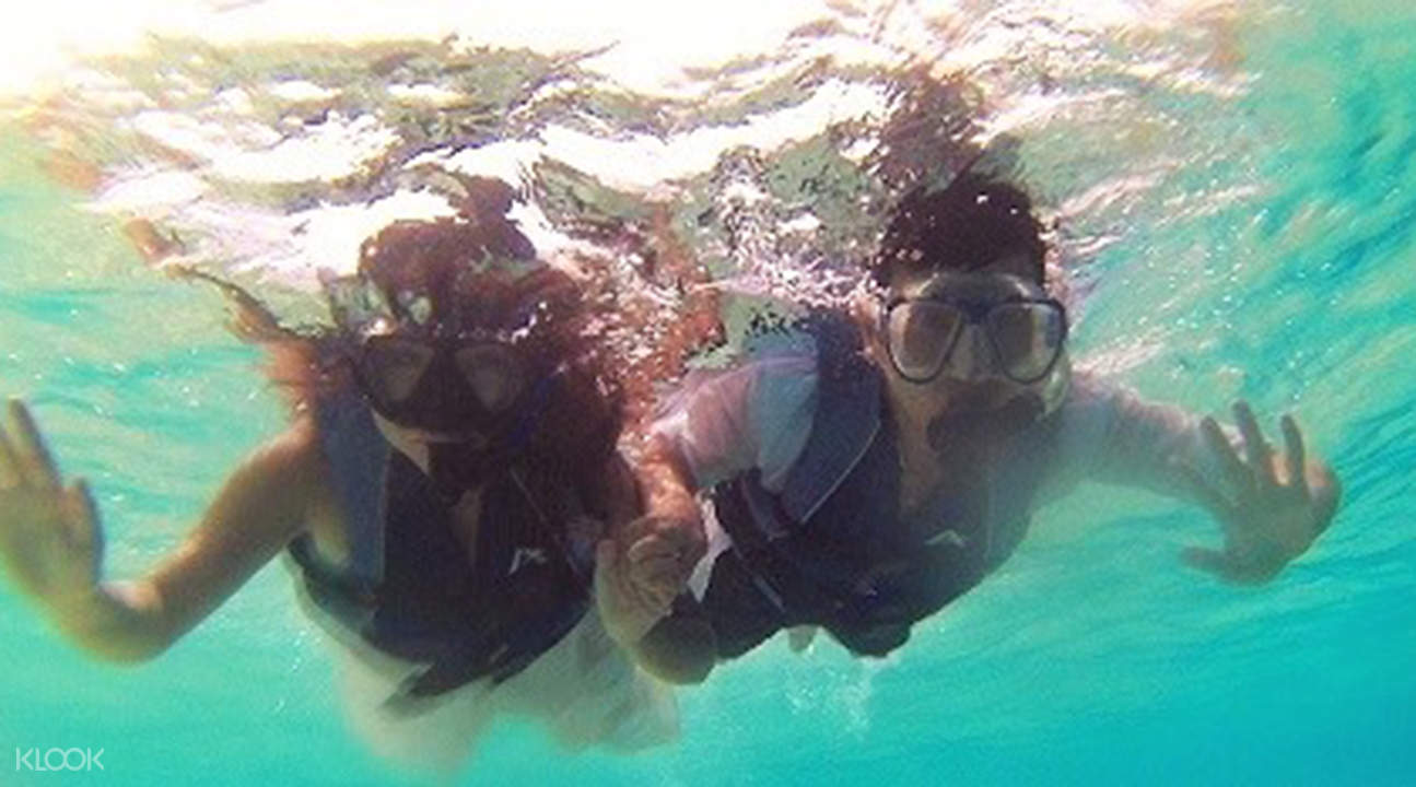 白沙島浮潛