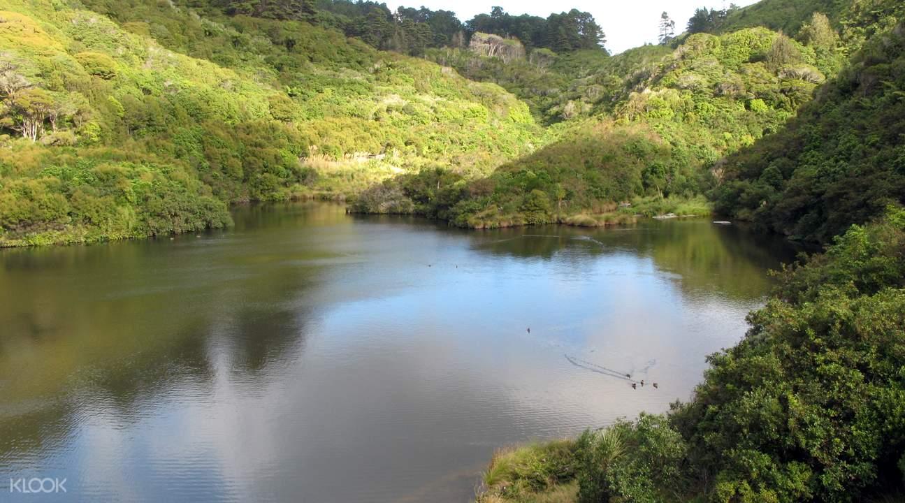 西兰蒂亚动植物保护区之旅