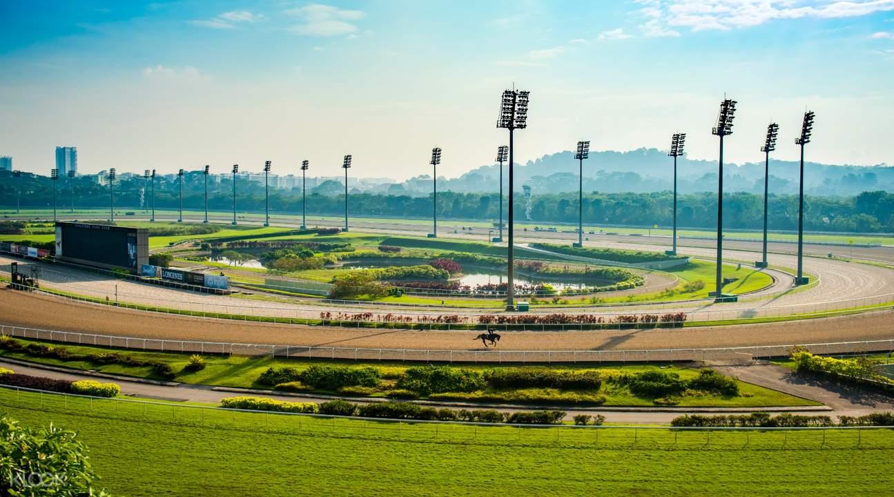 racetrack view