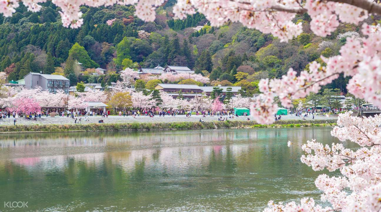 kyoto scenic railway