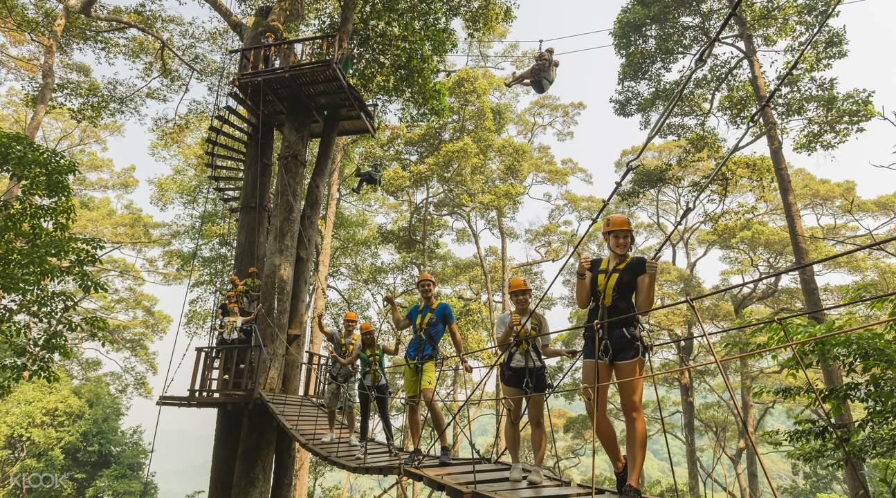 rope skybridge jungle flight zipline adventure