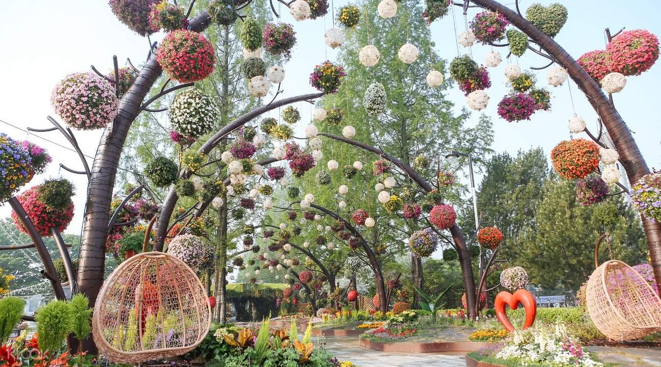 horticulture goyang