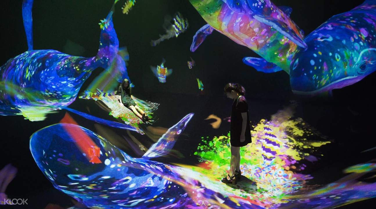 teamLab Art Exhibition Ticket, Macau - Klook