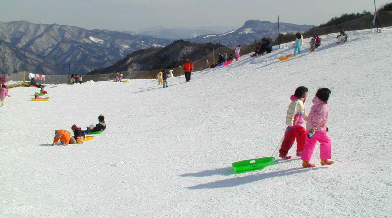 norn minakami ski resort and harada farm one day tour