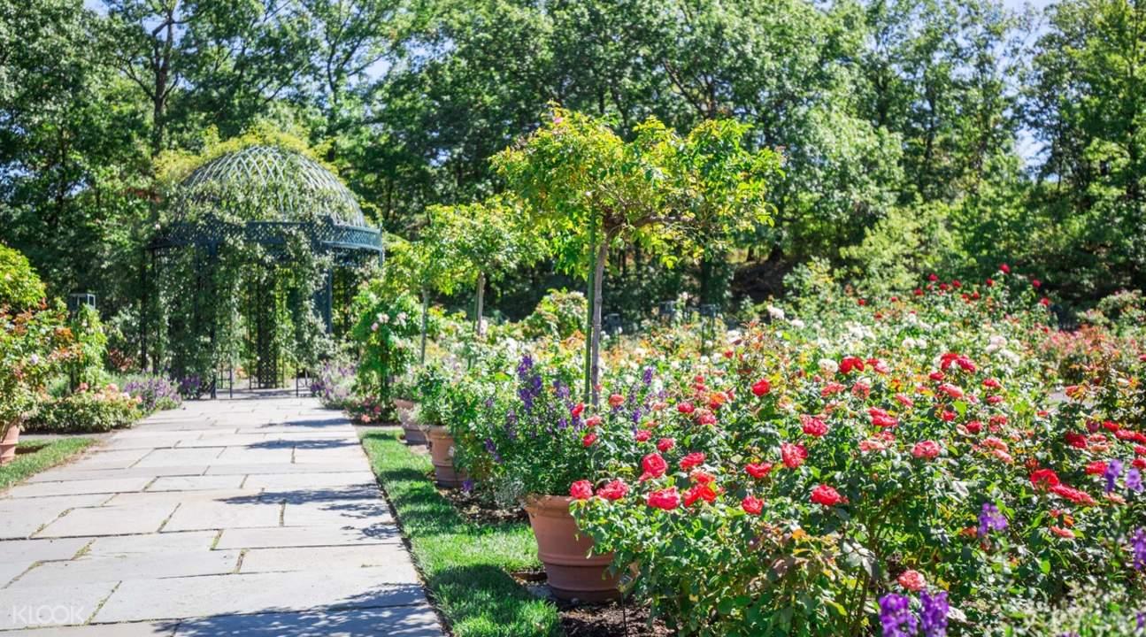 botanical garden walking road