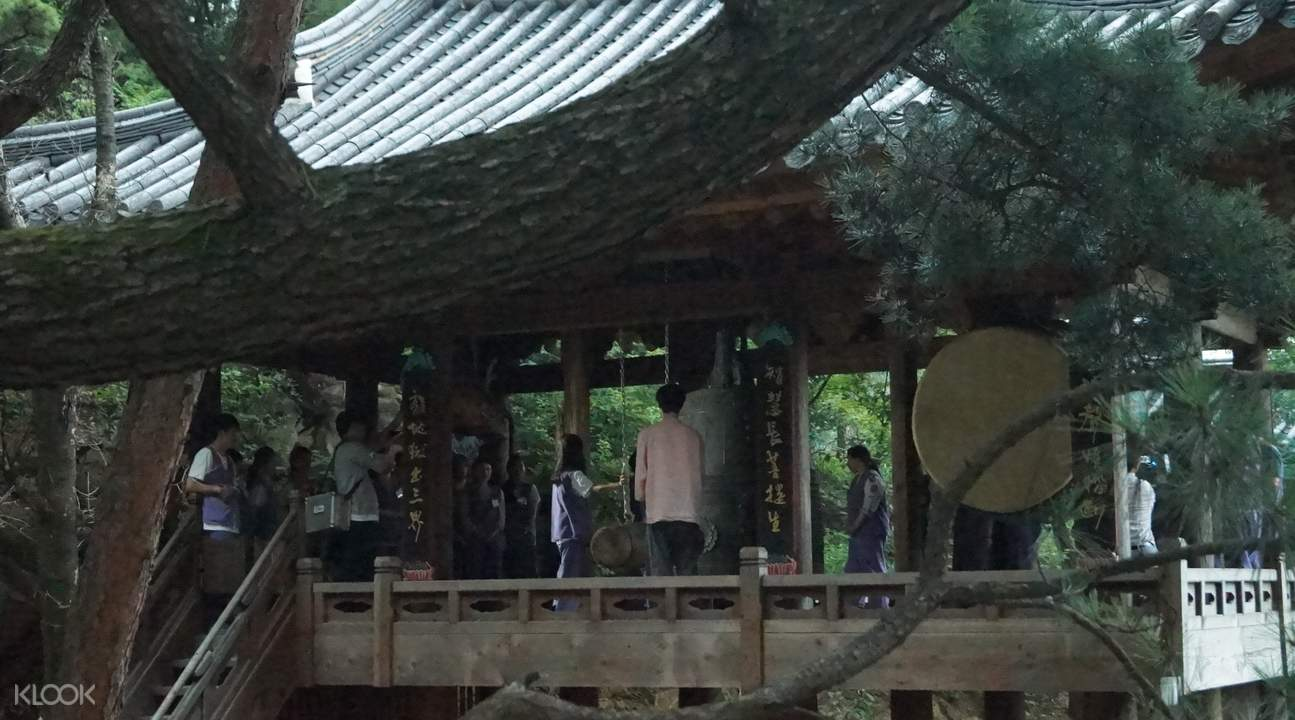 首爾金仙寺寺廟體驗