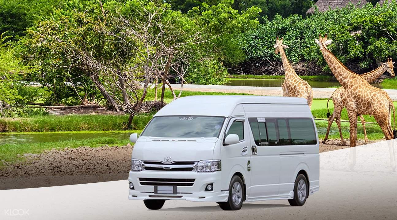 曼谷賽福瑞野生動物園(Safari World)往返接送